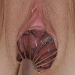 Porn Core Thumbnails : PYWP