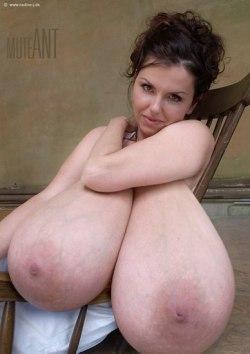 Milena velba morph